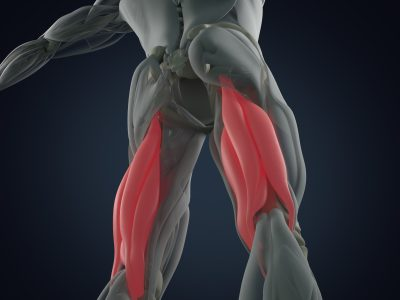 Hamstring injuries, sports physio belfast