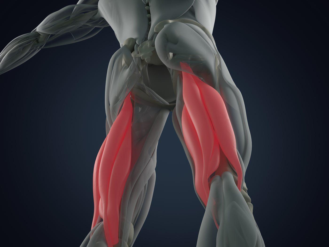 Hamstring injuries, sports physio belfast